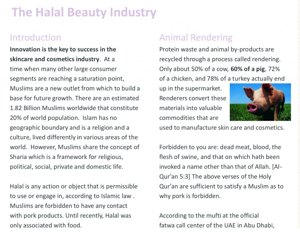 halal-qa-and-blog
